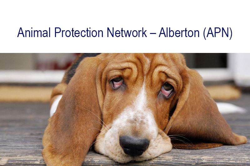 Animalprotection